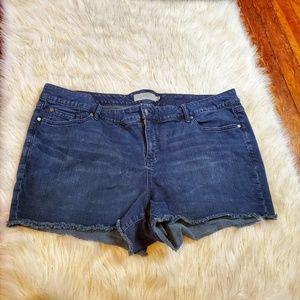Torrid Jean Short Cuttoffs Size 26